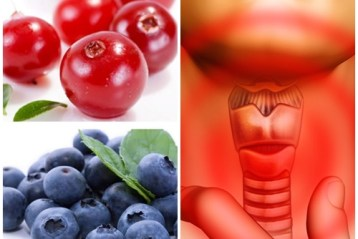 Glandula Tireoide tratamento natural