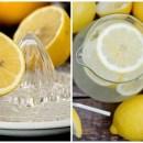 Limonada Emagrecedora – 3kg por semana