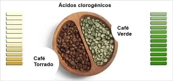 O café verde é uma fonte rica de vários tipos de antioxidantes e outros compostos benéficos, incluindo uma série de polifenóis.
