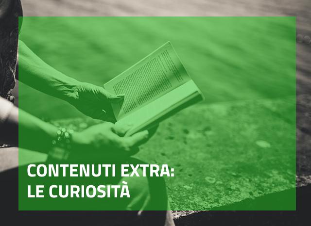 curiosità di un romanzo