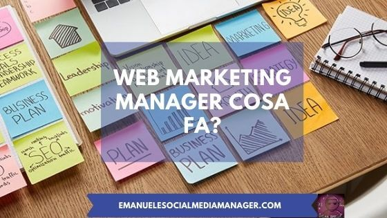 web marketing manager cosa fa