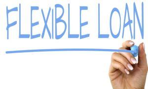 flexy loan