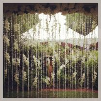 1000 Ideas About Outdoor Wedding Backdrops On Emasscraft Org
