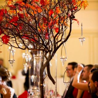 1000 Ideas About Tree Wedding Centerpieces On Emasscraft Org