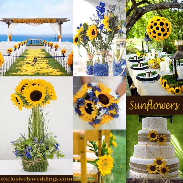 1000 Images About Wedding Theme Sunflowers