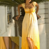 Best And Luxury Yellow Evening Dresses From Cosmina Englizian 2