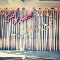 Butterfly Wedding, Photo Backdrops And Wedding On Emasscraft Org