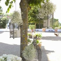 Gallery Rustic Birdcages And Baby's Breath Wedding Decor