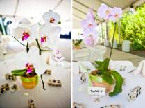 Katherinn's Blog Orchid Wedding Centerpieces The Colors Are