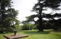 Photos Of Weddings At Goodnestone Park Goodnestone, Kent