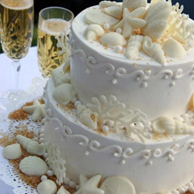 Seashell Cakes