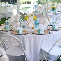 Tiffany Blue And Yellow Wedding At Oneil House In Akron