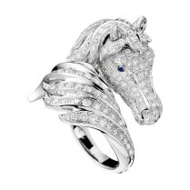 1000 Ideas About Horse Ring On Emasscraft Org