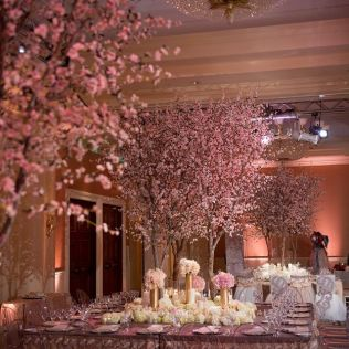 1000 Images About Cherry Blossom Wedding Decoration On Emasscraft Org