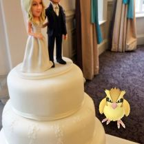 Bride Upstaged By Uninvited Wedding Guests When Venue Turned Out