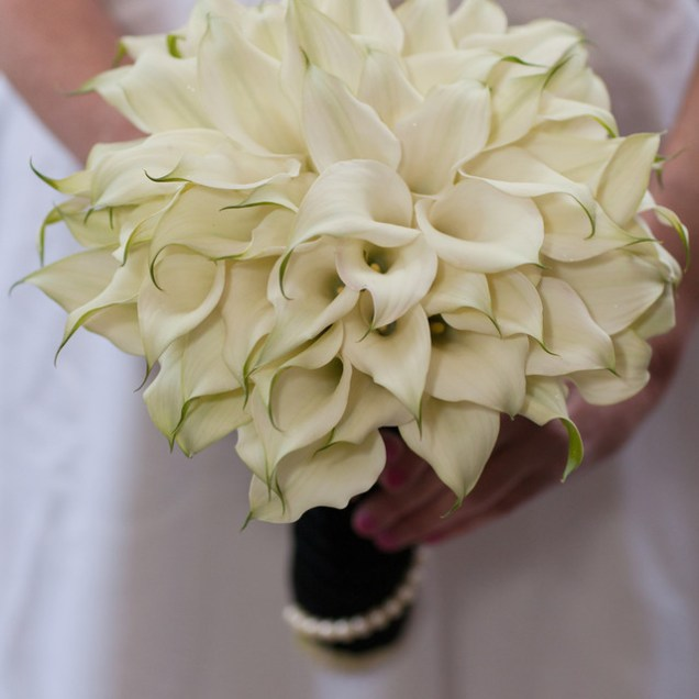 Calla Lily Wedding Packages