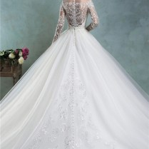 Fairy Ball Gown Illusion Neckline Long Sleeve Tulle Lace Wedding