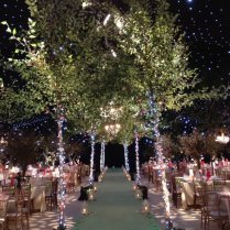 Fairy Lights Decorating The Trees At A Wedding