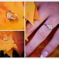 Photo Credit House On Hudson 1000 Images About Superman Rings On