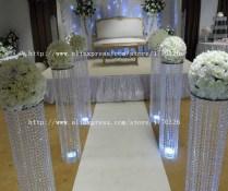 Popular Acrylic Pillars