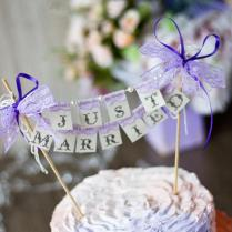 Small Wedding Cake Topper Banner Just Married With Pearls And