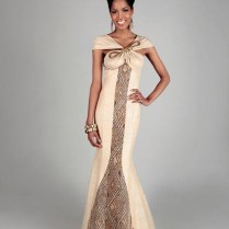 South African Traditional Wedding Dresses Designs 2017