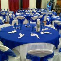 White And Royal Blue Wedding Party Ideas
