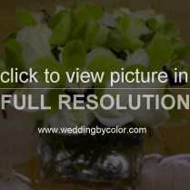 1000 Images About Black White And Green Wedding On Emasscraft Org