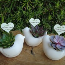 12 Succulent Plant Rosette Ceramic Bird Favors And Tags For