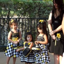 Cupcakes And Bling A Batman Wedding And A $9 Wedding Dress