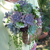 The Hottest Wedding Trend 60 Succulent Wedding Bouquets