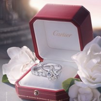 17 Best Images About Cartier On Emasscraft Org