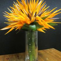 2011 Wedding Bouquet Photos