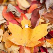 40 Gorgeous Fall Leaves Wedding Ideas
