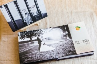 Custom Themed Wedding Album Design