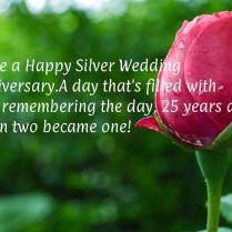 Have A Happy Silver Wedding Anniversary A Day That's Filled With
