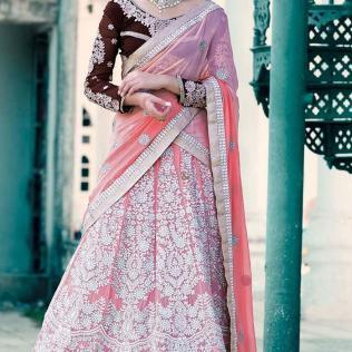 Punjabi Wedding Lehenga Dress With Designer Blouse Back Neck