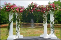 Wedding Arches For Rent