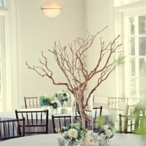 Amazing Trees For Wedding Centerpieces Wedding Trees For Wedding
