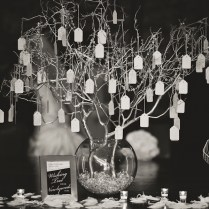Hanging, Wishing Tree, Could Be Centerpiece On Table Surrounded By