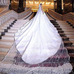 Luxury One Layer 6 Meters Long Bridal Veil With Floral Appliques