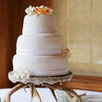 Mesmerizing Deer Antler Wedding Decorations 58 On Wedding