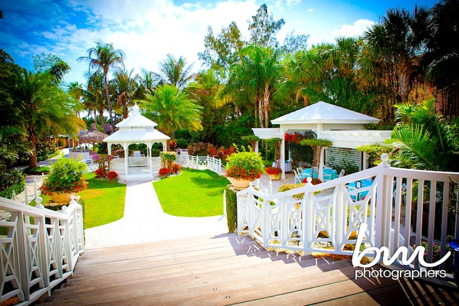 Miami wedding venues place for wedding outside in south miamiflorida miami wedding venues junglespirit Gallery