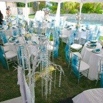 Turquoise And Silver Wedding Ideas Fascinating Turquoise And