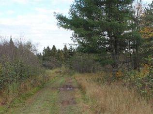 Rustic Getaway Woods Rd, 1098865 Farm For Sale Lanse Baraga
