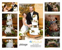 Cake Designs Montgomery Al