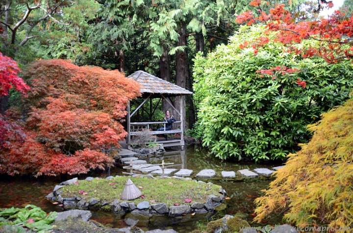The Butchart Gardens Japanese Garden no outono