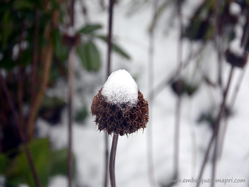 beleza-no-invernoa
