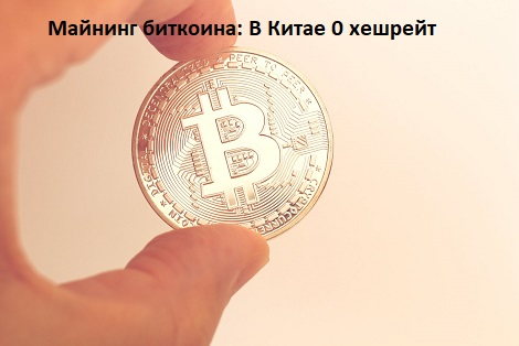 photo - bitcoin in arm