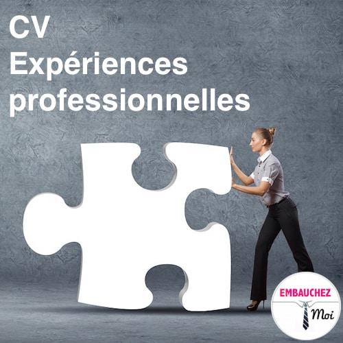 Cv expériences professionnelles